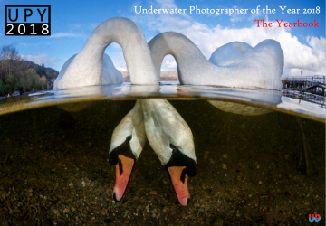 Underwater Photographer of the Year 2018: The Yearbook