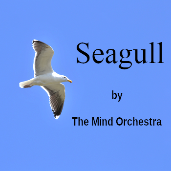 Seagull by The Mind Orchestra (a New Age song in MP3)