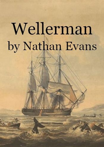 Wellerman by Nathan Evans (whaling song in MP3)