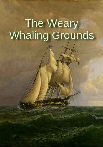 The Weary Whaling Grounds by Roger McGuinn (traditional song about whalers)
