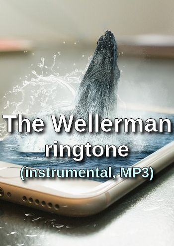 The Wellerman ringtone (instrumental, MP3)