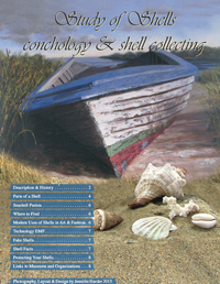 Study of Shells: conchology and shell collecting